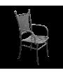 Iron Chair Benny